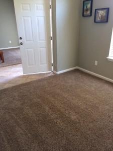 koberec vs plovoučka