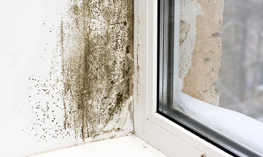 vlkost-v-dome-okno