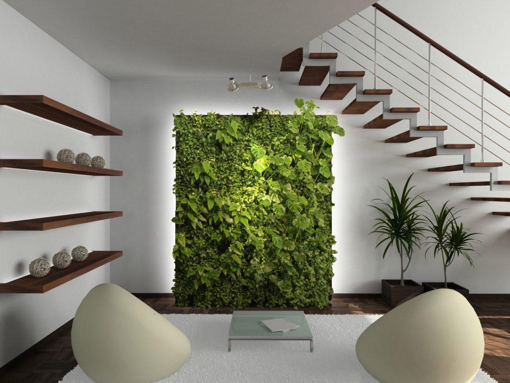 rostliny v interiéru - tělo