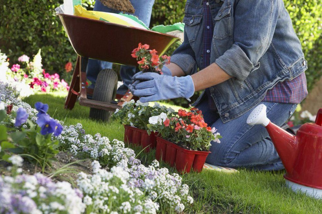 Poznejte trendy v zahradním designu! Co právě letí?