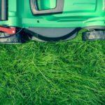 Pečujete o trávník správně?