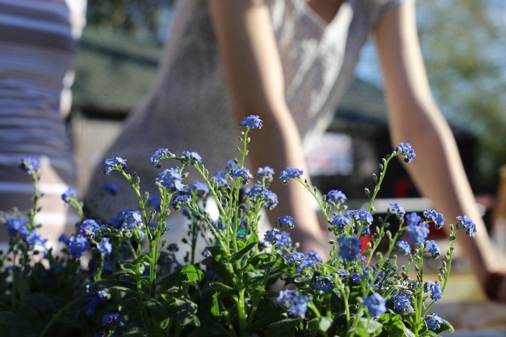 I malou zahradu lze zvětšit. Víme, jak na to!