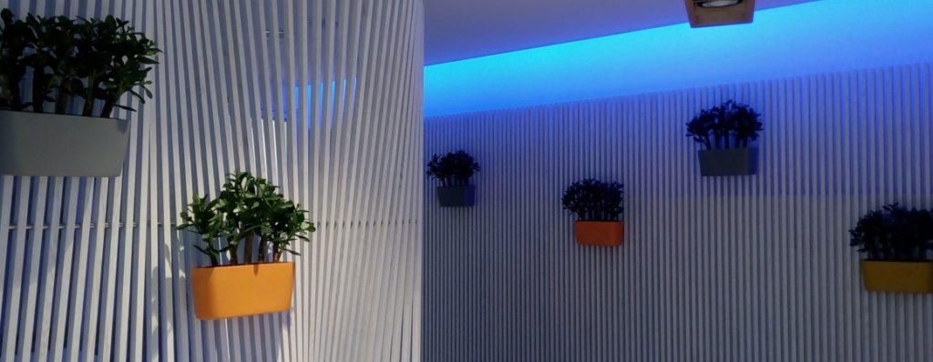 Vertikální zahrady – oáza klidu pro vaše oči