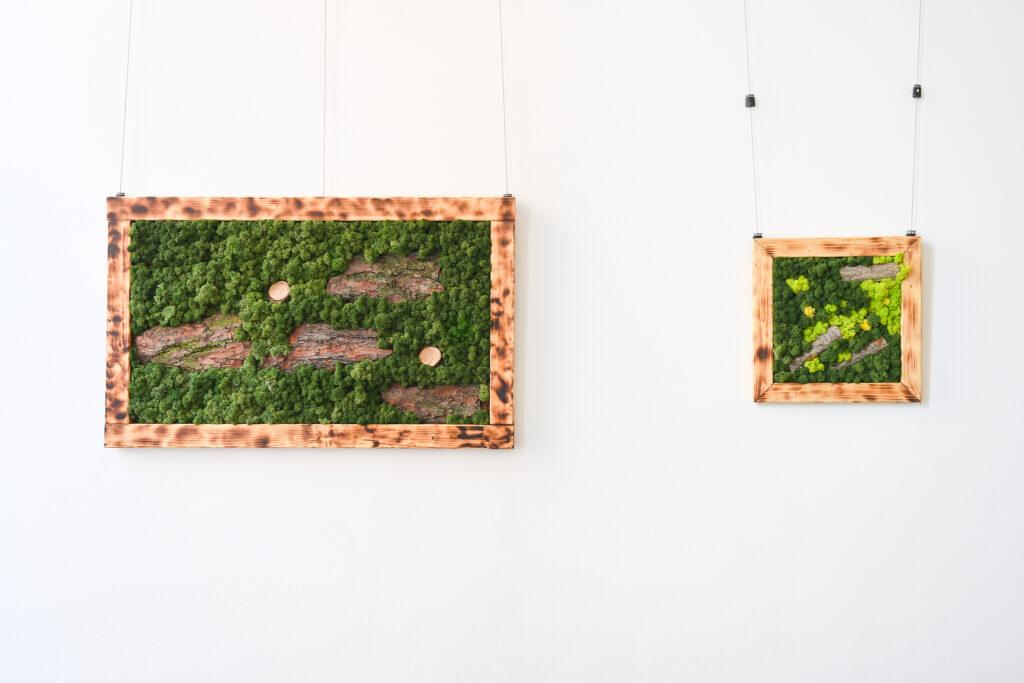 https://www.profimech.cz/image/cache/catalog/Galerie/steny/preserved-plants-usa-moss-greenwall-design-00019-1020x705.jpg