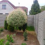 Betonový plot podtrhne vzhled každé nemovitosti